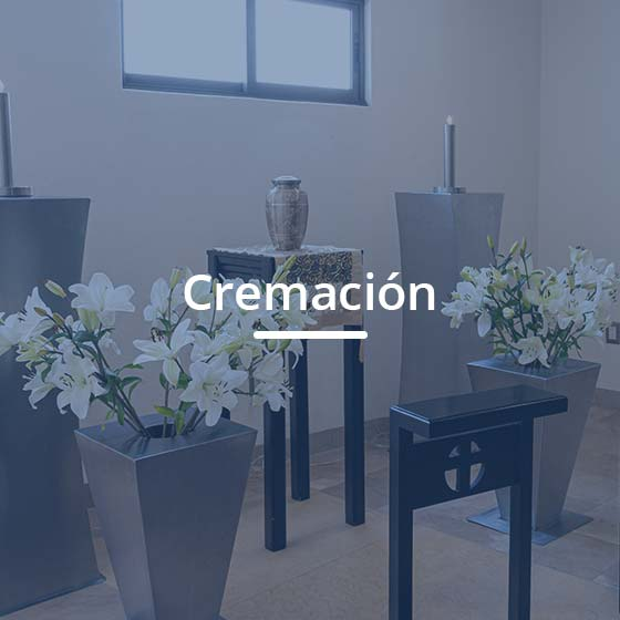 cremacionprincipal